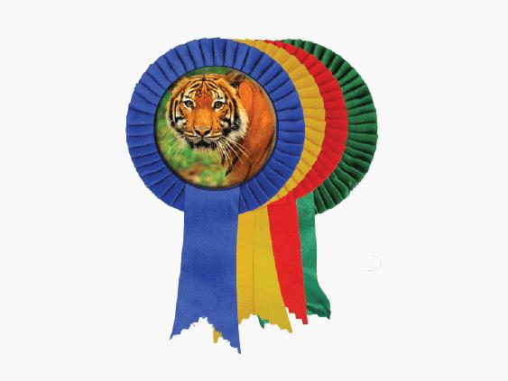 Badge4u – Znaczek – Kotylion